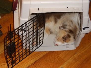Cratesleeping