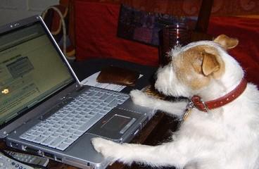 Marleyblogging